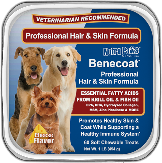Benecoat essential fatty acids for dogs front label for Fish oil for dogs skin